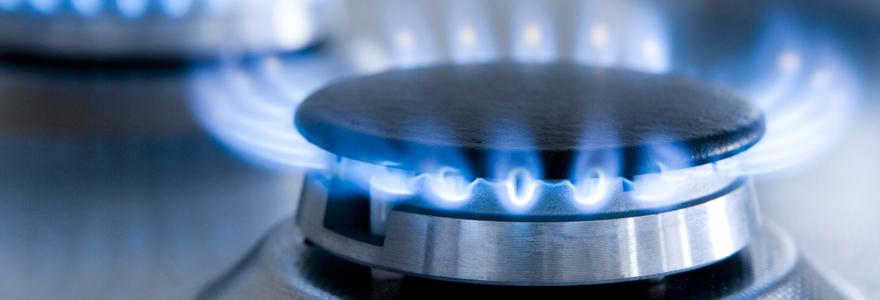 Le gaz renouvelable est-il forcément cher ?