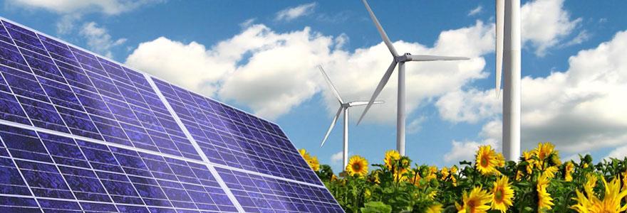 Transition énergétique : faire appel à un expert