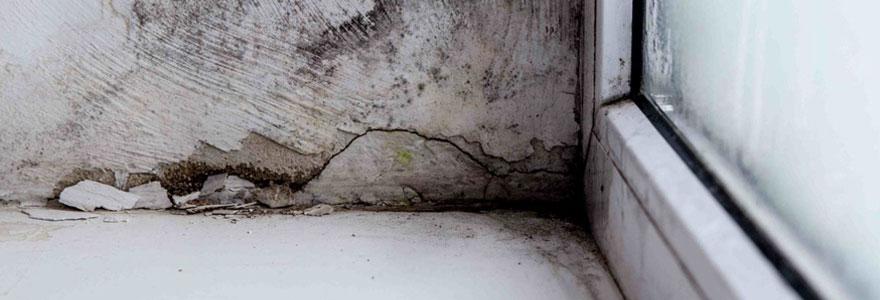 Comment traiter l'humidité des murs ?
